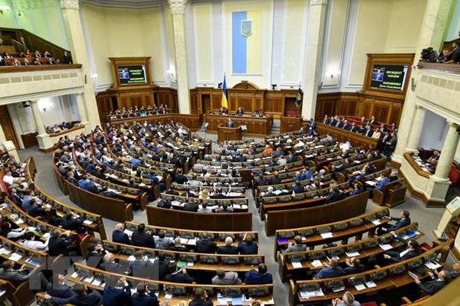 Ukraine ändert Verfassung zur Beschleunigung der Mitgliedschaft der EU und Nato - ảnh 1