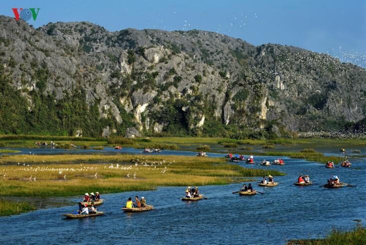 Entdecken die Naturschönheit des 9. Schutzgebietes Van Long- Ramsar in Vietnam - ảnh 1