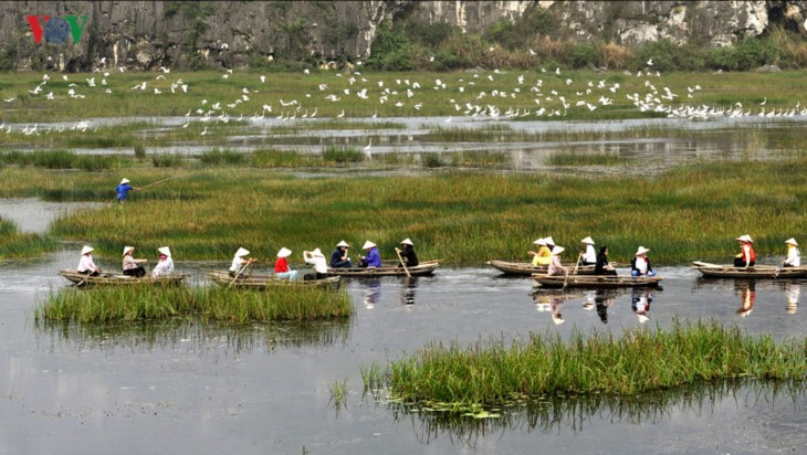 Entdecken die Naturschönheit des 9. Schutzgebietes Van Long- Ramsar in Vietnam - ảnh 5