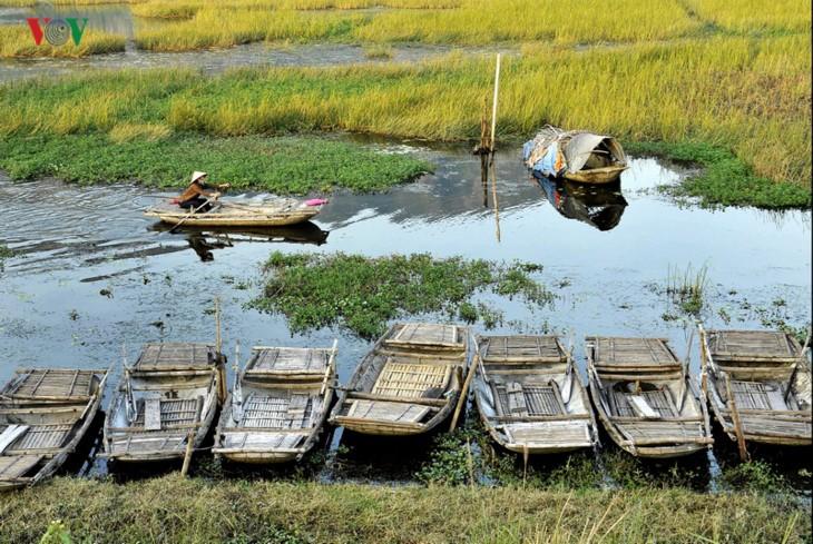 Entdecken die Naturschönheit des 9. Schutzgebietes Van Long- Ramsar in Vietnam - ảnh 7