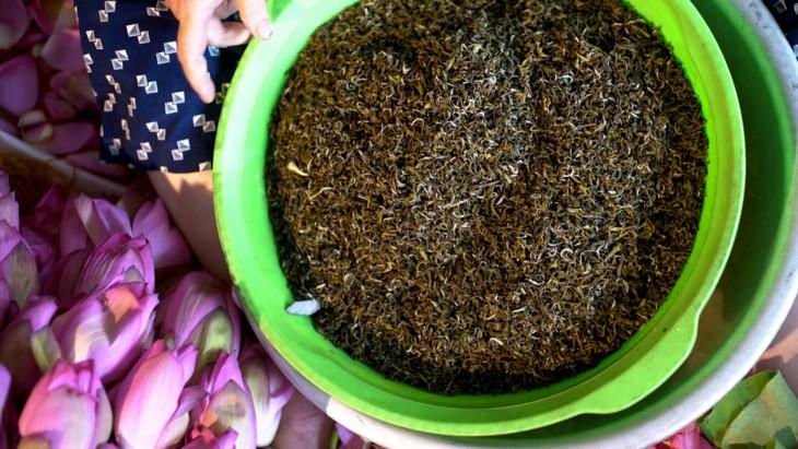 Aroma von Lotusblüten im Tee - ảnh 26