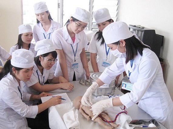 Möglichkeiten für vietnamesische Pflegekräfte, in Deutschland zu arbeiten - ảnh 1