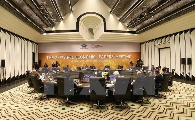APEC 2017: ສື່ມວນຊົນສາກົນ ສືບຕໍ່ຍ້ອງຍໍຊົມເຊີຍຜົນສຳເລັດດ້ານການທູດຂອງ ຫວຽດນາມ - ảnh 1