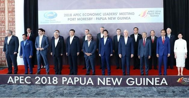APEC 2018: ບັນດາການນຳສຸມໃສ່ປຶກສາຫາລືການຄ້າເສລີ - ảnh 1