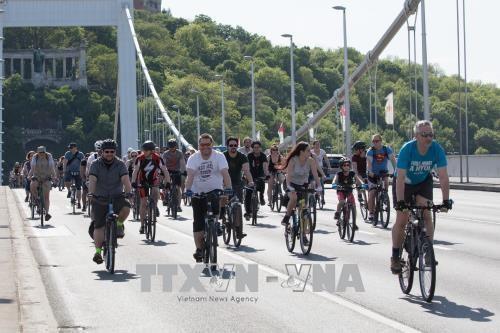 베트남, 국제 자전거의 날 통해 지속가능발전에 기여강화 - ảnh 1