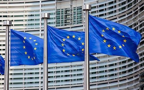유럽 연합 정상회담, 이주 문제 합의 모색 어려움 - ảnh 1