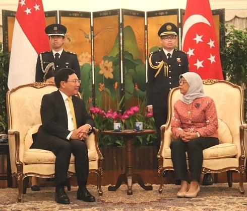 Pham Binh Minh 부총리, 싱가포르 외무부장관 방문 - ảnh 1