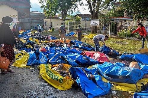인도네시아, 지진 쓰나미 사망자 속출 - ảnh 1