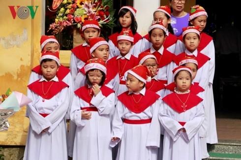 베트남의 열띤 성탄 분위기 - ảnh 1