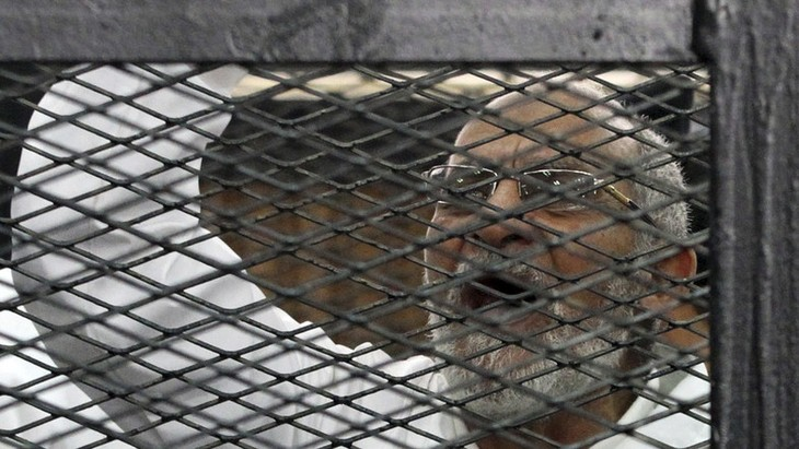 Egypt: Mass protests against trial of MB members - ảnh 1