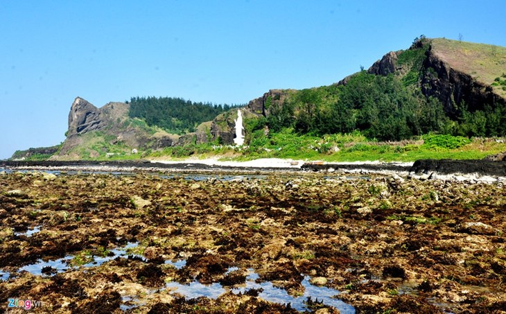 Amazing geological heritage in Ly Son island - ảnh 5