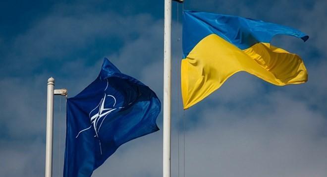Georgia y Ucrania colaboran para integrarse más profundamente en la OTAN y la UE - ảnh 1