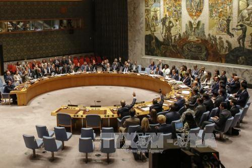 Consejo de Seguridad de la ONU condena firmemente prueba de misil norcoreana - ảnh 1