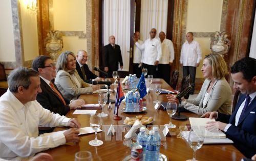 La UE será un socio confiable para Cuba - ảnh 1