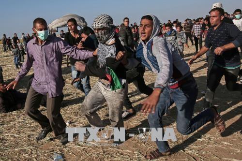 Cuatro palestinos muertos en nuevas protestas en Gaza - ảnh 1