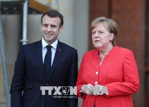 Francia y Alemania defienden acuerdo nuclear con Irán - ảnh 1