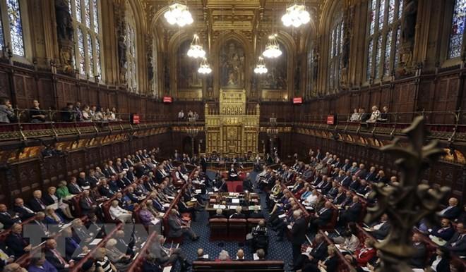 Cámara Alta británica permite al Parlamento decidir sobre el acuerdo final del Brexit - ảnh 1