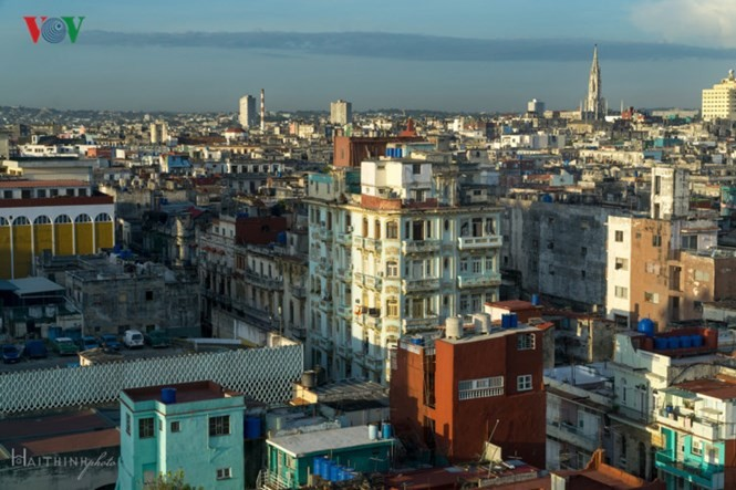 ONU destaca a Cuba como ejemplo mundial de seguridad alimentaria - ảnh 1