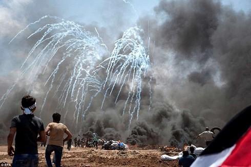 Vietnam expresa pésame por las víctimas palestinas en conflictos en Franja de Gaza - ảnh 1