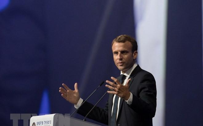Francia acogerá conferencia internacional sobre Libia - ảnh 1