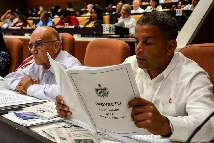 Se iniciará en Cuba un referendo sobre la modificada Constitución - ảnh 1