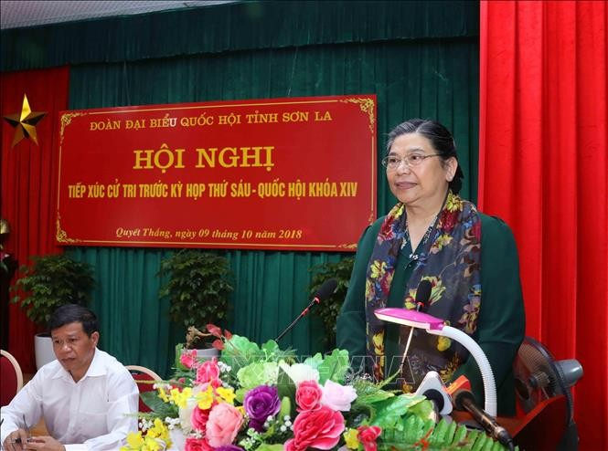 Dirigentes vietnamitas se reúnen con electores de varias localidades - ảnh 1