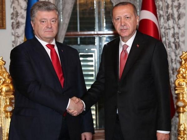 Turquía y Ucrania acuerdan promover asociación estratégica - ảnh 1