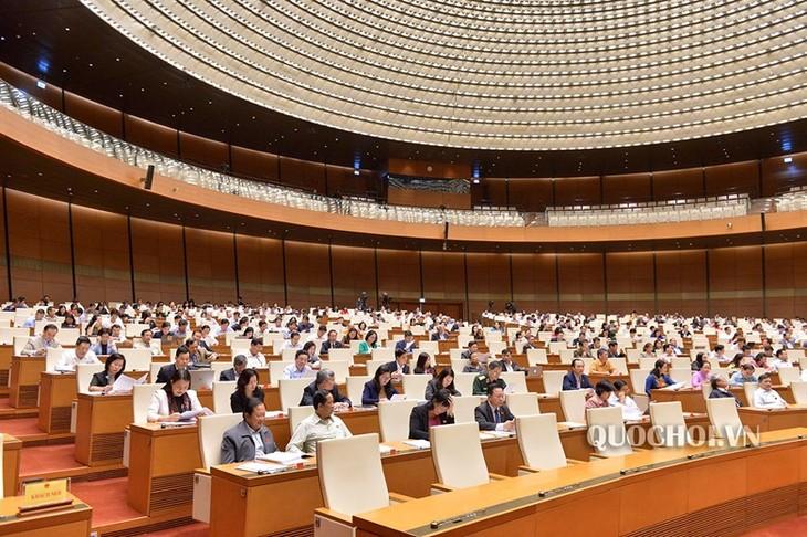 Parlamento de Vietnam ratifica plan de presupuesto estatal para 2019 - ảnh 1