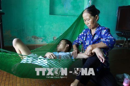 Promueven cooperación internacional en ayuda a víctimas de dioxina de Vietnam - ảnh 1