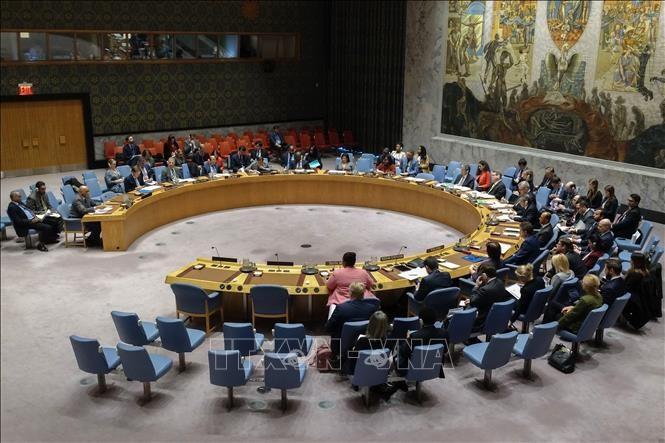 Consejo de Seguridad de la ONU se reúne a petición de Siria sobre los Altos del Golán - ảnh 1