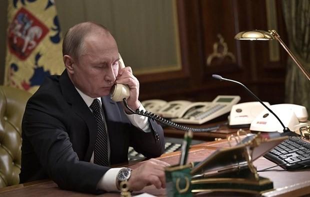 Líderes de Alemania, Rusia y Francia debaten temas de interés común - ảnh 1