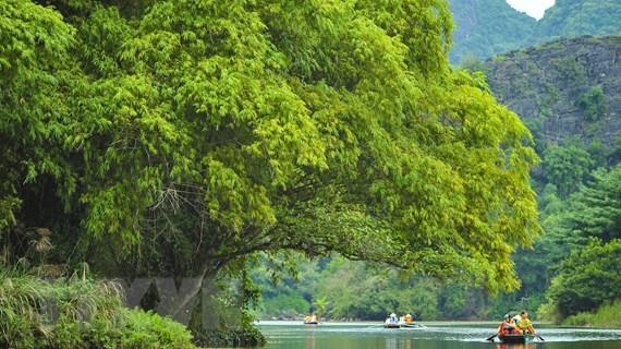 Diario malasio destaca avance de turismo en Vietnam - ảnh 1