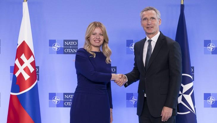 Eslovaquia aumentará presupuesto militar a petición de la OTAN - ảnh 1