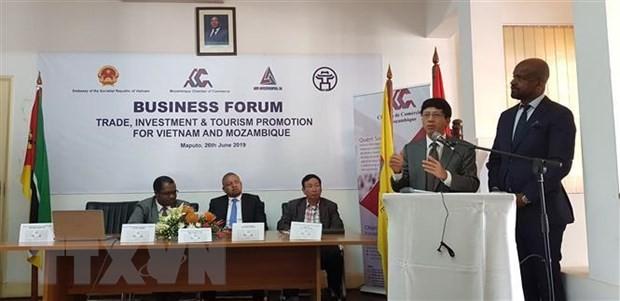 Vietnam y Mozambique promueven cooperación en inversión, comercio y turismo - ảnh 1