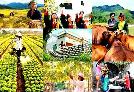 Vietnam prioriza políticas del bienestar social - ảnh 1