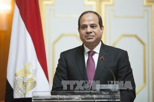 Egyptian President begins state visit to Vietnam - ảnh 1