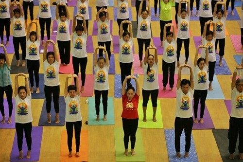 """Yoga for a healthy life"" introduced to Hanoians  - ảnh 1"