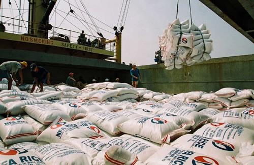 Vietnamese rice export increases - ảnh 1