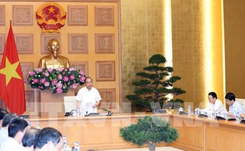 PM chairs meeting on landslide settlement  - ảnh 1
