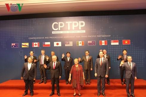 칠레에 CPTPP협정 정식 체결 - ảnh 2
