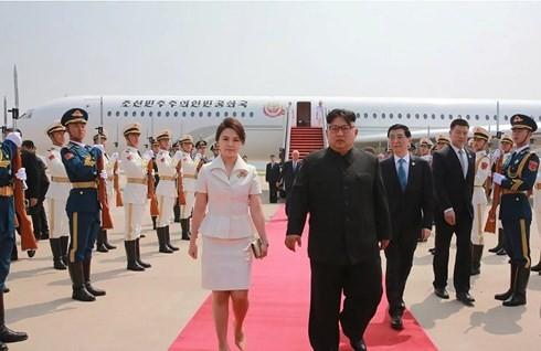 한국 중국-조선 정상 면담 결과 환영 - ảnh 1