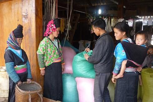 베트남, 빈곤퇴치 부문 많은 진보 - ảnh 1
