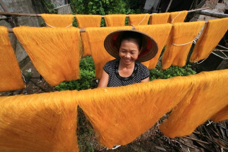일하는 베트남 여성의 아름다움 - ảnh 4