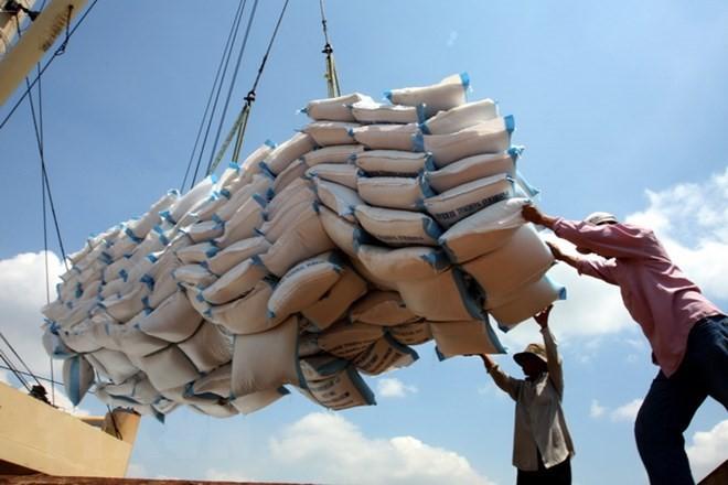 10월 쌀 수출액  520백만 톤 달성 - ảnh 1