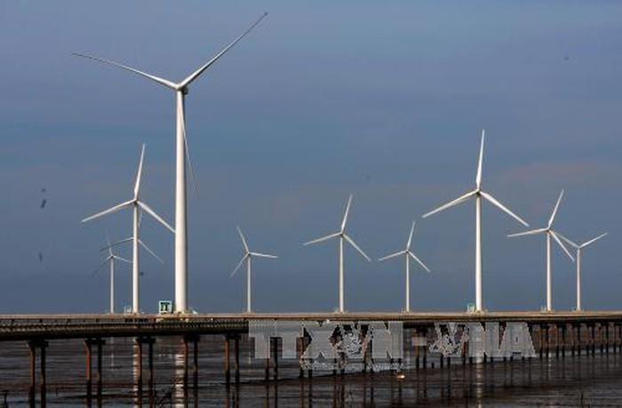 박 리에우에서의 풍력 발전 개발 및 베트남의 풍력 발전 잠재력 - ảnh 1
