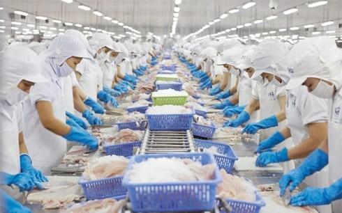 지속 가능한 어업 발전을 위한 베트남 노력 - ảnh 1