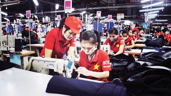 자유 무역 협정에 부응하는 베트남의 발걸음 - ảnh 1