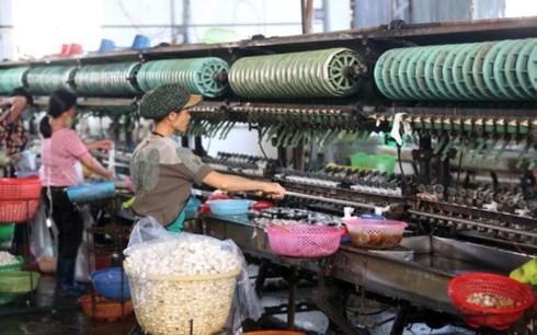 Forbes잡지, 베트남을 아시아 최고 투자 열풍 대상으로 평가 - ảnh 1
