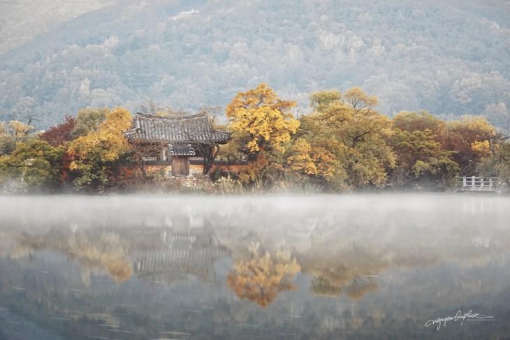 베트남 사진작가의 사진을 통해 바라본 한국 가을의 아름다움 - ảnh 2
