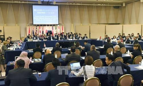 Les négociateurs du TPP se réunissent au Japon - ảnh 1